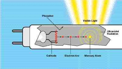 Fluorescent lamp technology.