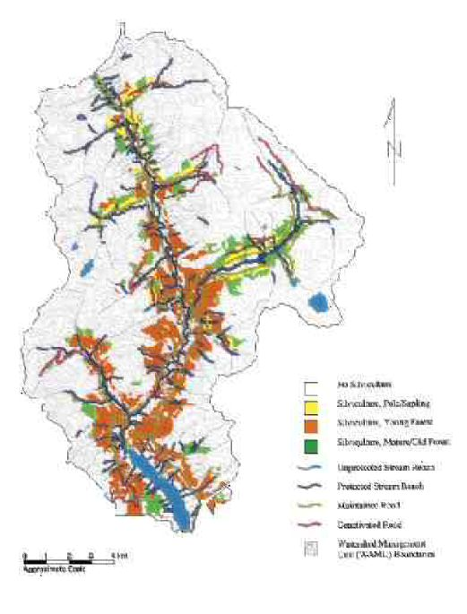 """Figure showing the """"Extensive Treatment"""" option for the Capilano watershed. The study produced maps of existing conditions of the forest, terrain, stream and wildlife in the three watersheds, as well as studies of hazards such as fire, and a series of models predicting the effects of different levels of intervention."""