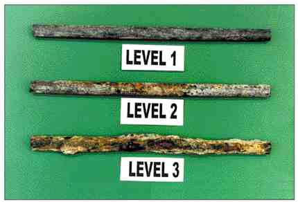 Rebar samples representing different levels of corrosion observed.