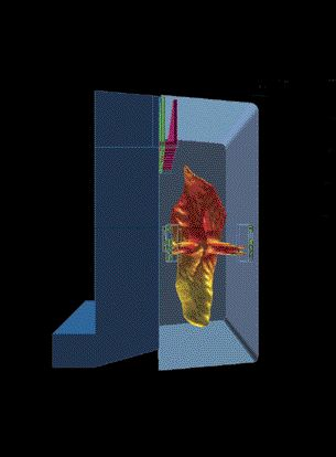 Computer model of an optimized tangentially fired boiler with luminous flame contour (courtesy Cerrey S.A.).