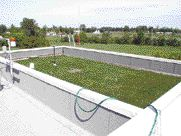 """Test roof garden at the National Research Council Field Roofing Facility in Ottawa. Researchers monitored two roof sections, one a vegetative roof, and the other a conventional modified bituminous roof, over a two-year period. The green roof's thermal mass was found to dramatically reduce surface temperature fluctuations and reduce the building's cooling load by 75%. The 150-mm (6"""") roof planting system also retained up to 8 mm of rain water and reduced run-off by 75%. Another test site with vegetation on the walls reduced the cooling load even more. The report calculates that assuming even a small market penetration, over 10 million square metres of green roof could be constructed in the city of Toronto by the year 2010. """"Evaluating Rooftop and Vertical Gardens as an Adaptation Strategy for Urban Areas,"""" NRCC-46737, final report by Brad Bass and Bas Baskaran, Sept. 2003. http://irc.nrc-cnrc.gc.ca"""