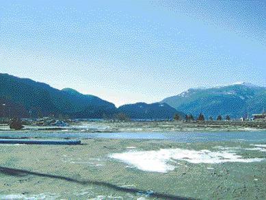 Restored site in Squamish, B.C.