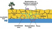 Schematic of the biobarrier concept showing a containment zone and a biotreatment zone.