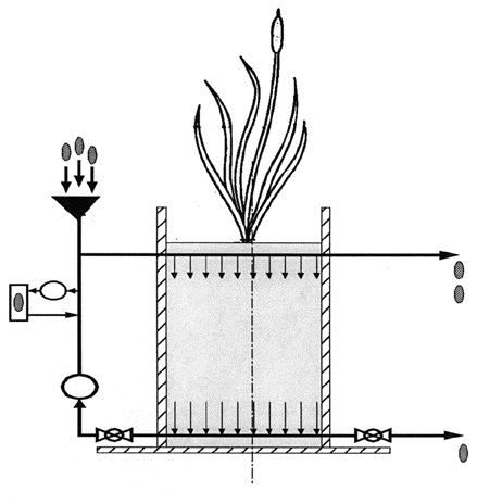 Schematic section of the wetland test unit. Nutrients, dilution water and tracers are combined with recirculation water and distributed through a perforated pipe. Water flows down through the gravel bed.