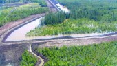 A cross dyke, wetland and discharge channel; the entire site covers 66 hectares of semi-permanent wetlands and an 82-hectare floodplain.