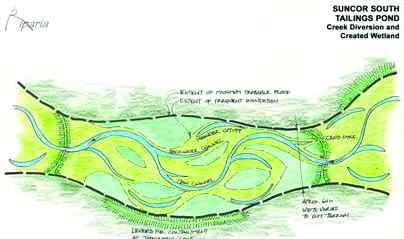 Wetland concept sketches.