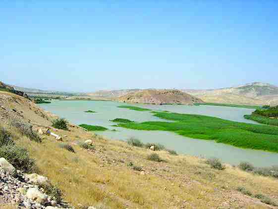 Top: the Fergoug reservoir located in western Algeria is filled with sediments and overrun with aquatic plants.