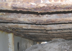 Above: examples of deteriorated bridges from the report.