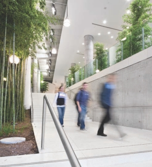 Transition corridors to adjacent buildings; a challenge was integrating the fire and security systems with the adjoining buildings on the university campus.