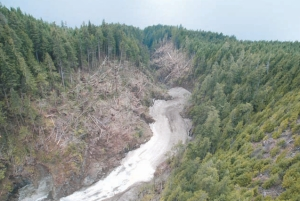 Forest destroyed by a large, wet avalanche in a gully near Campbell River in the Coast Mountain Range.