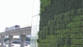 YVR Station living wall.