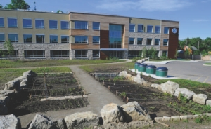 Employee garden plots in front of the building.