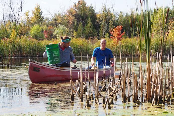 Submerged Vegetation Sampling at SWM Pond