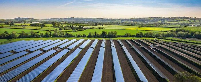 Violet Solar Farm